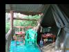 gorillatrekking_uganda12-png